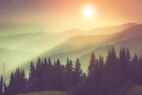 Landscape of misty  mountain hills and forest. Fantastic evening glowing by sunlight. - 109260614