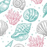 Seamless pattern sea shell.  Vector engraving vintage illustrations. Isolated on  white background