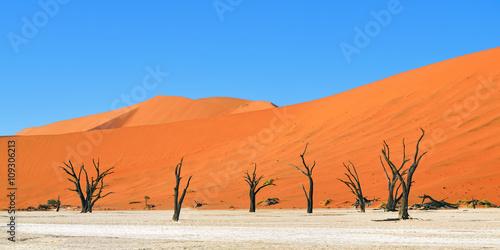 In de dag Oranje eclat Deadvlei, Sossusvlei. Namibia