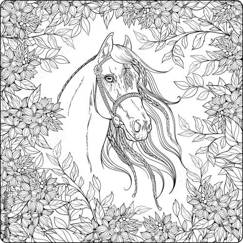 horse in the garden.