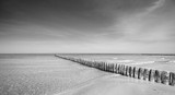 Black and white panoramic photo of a wooden breakwater on a beach.