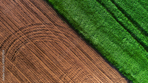 Papiers peints Vert Aerial view over the agricultural fields