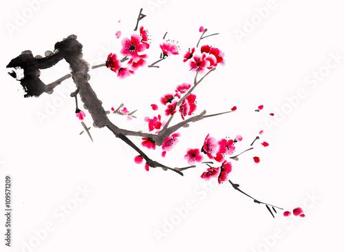 Fototapeta Chinese watercolor cherry painting