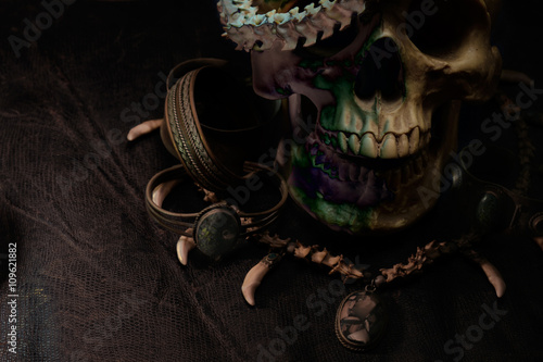 Poster Skull / Skull and necklace of snake backbone on old and dirty black leather