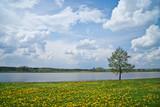 Wiosna nad jeziorem - 109622089