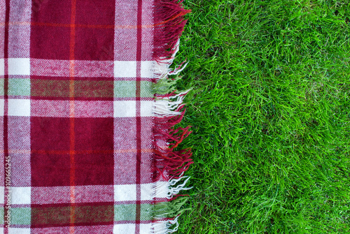 Checkered Plaid Picnic Green Grass Background Poster