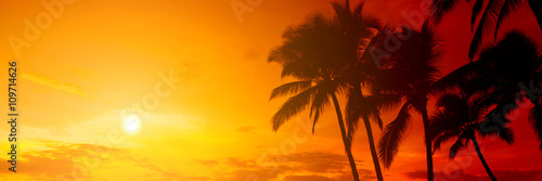 Fotobehang Strand Tropical sunset