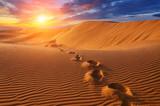 desert - 109718256