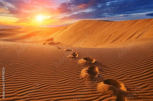 Fototapety, obrazy : desert