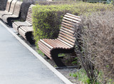 wooden bench in a park on the nature