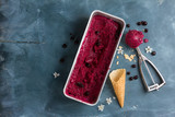 Berry ice cream or sorbet with fresh berry