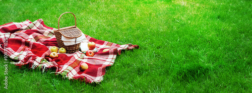 Checkered Plaid Picnic Basket Green Grass Summer - 109771025