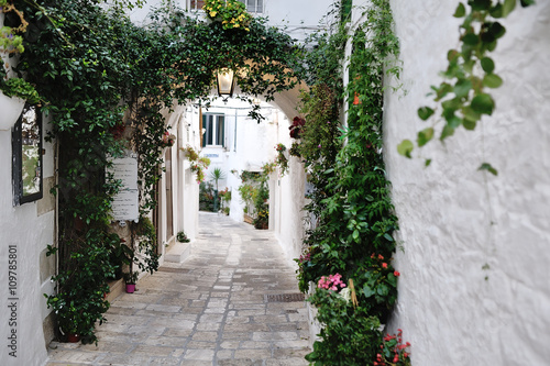 beautiful view of scenic narrow alley with plants, Ostuni, Apulia, Italy