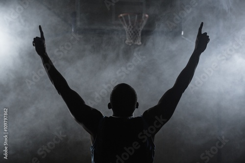 Rear view of a basketball player with his arms in the air Poster