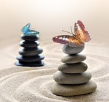 Butterfly and stones