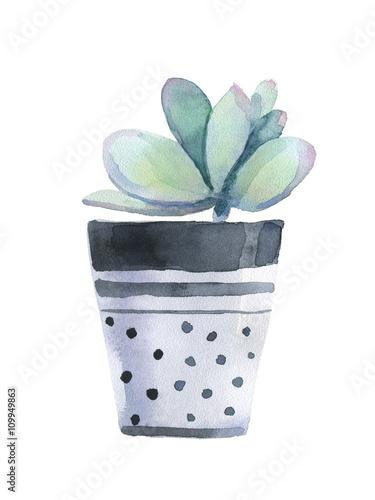 Watercolor succulent in a flowerpot. - 109949863