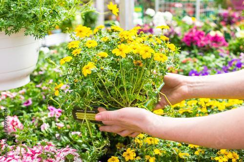 Junge Frau im Gartencenter