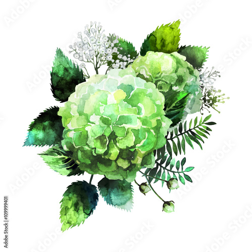 Green watercolor  hydrangea vignette