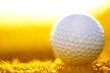 green field and white golf ball sanset