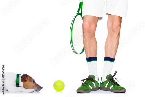 dog tennis ball player Poster