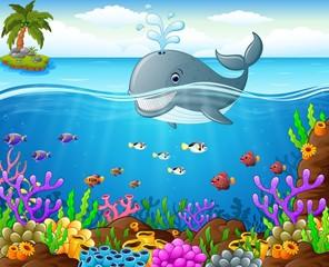 Cartoon whale under the sea