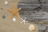 Dos estrellas de mar y conchas sobre arena en el paseo de una playa, con espacio publicitario