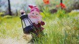 garden gnome - lamp standing on the grass in the garden amid the flowers