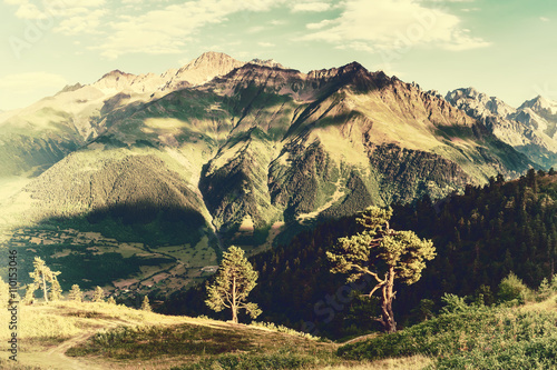 Fototapeta Vintage landscape with trees and mountains