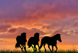 three running horses on sunset background