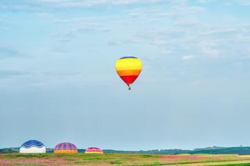 Tea Plantations, Spring, Sky and Hot Air Balloon