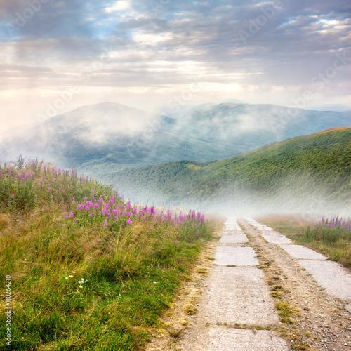 Leinwandbild Motiv wild flowers on the hillside at sunrise