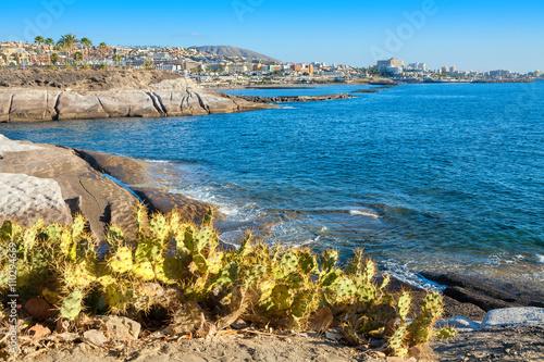 Zdjęcia na płótnie, fototapety, obrazy : Costa Adeje. Tenerife. Canary Islands