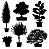 Vector set of silhouette plants and flowers in pot. Black and white illustration of plants