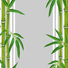 Seamless pattern with bamboo plants and leaves. Background made without clipping mask. Easy to use for backdrop, textile, wrapping paper