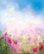 Sunshine, floral, nature background.