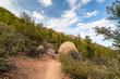 Arizona, Prescott, Granite Mountain Wilderness-Mint Wash Trail