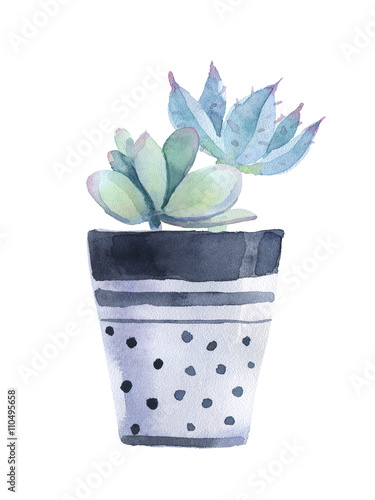 Watercolor succulent in a flowerpot. Isolated on a white background. - 110495658