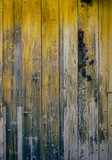 old wood texture with knot