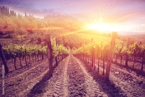 Deurstickers Crimson tuscany landscape