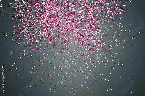 Foto Murales Flower petals on dark background