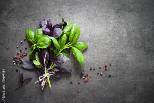 Green and purple basil. плакат