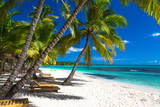 Fototapety Tropical beach in caribbean sea, Saona island, Dominican Republic
