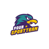 Hawk Team Logo