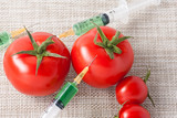 Injection into red tomato - Concept for Genetically modified fruit and syringe with colorful chemical GMO food