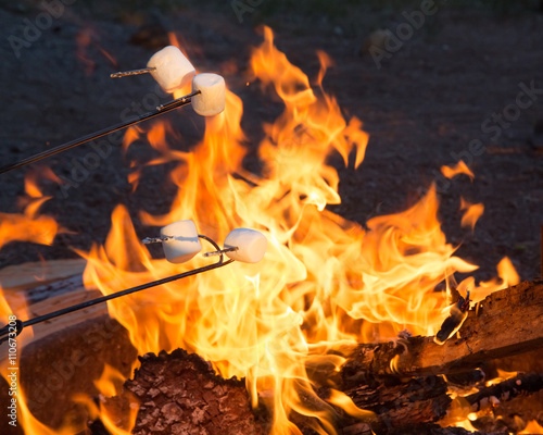 Roasting Marshmallows Over Campfire