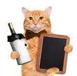Cat with wine.