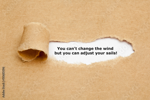 Poster You can not change the wind Quote