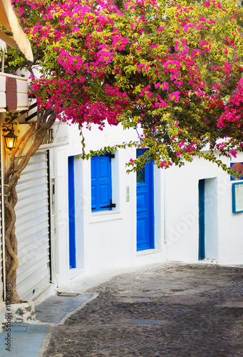 Traditional Greek srteet with white houses and blue windows and