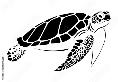 Poster graphic sea turtle, vector