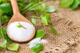 Produkte aus Birken - Betula - Zucker - Xylit - Sirup - Saft - Shampoo